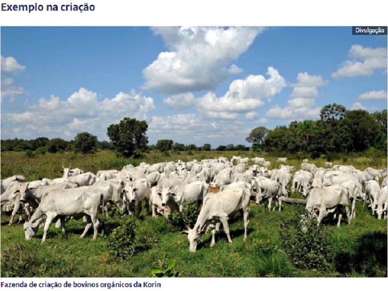 Diretor superintendente da Korin fala à Forbes sobre produção sustentável de carne orgânica