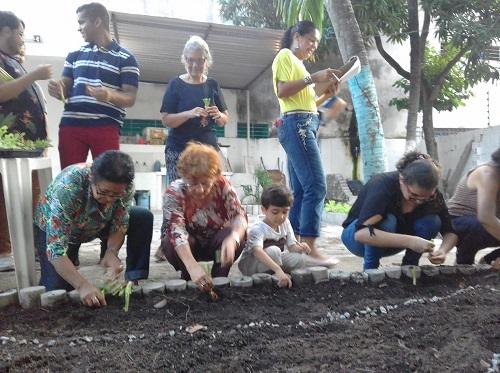 O envolvimento da família messiânica na horta caseira do Johrei Center Caxangá (PE)